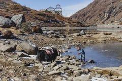 Jakken wachten tammer op het voeden van hem met water van de vijver op het gebied met stenen met berg op de achtergrond in de win Stock Foto's