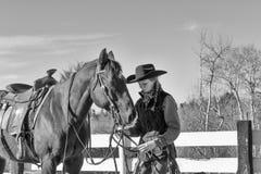 jako piękny cowgirl żeńskiego konia model Obrazy Stock