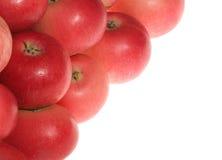 jako ramowa czerwień abstrakcjonistyczni jabłka fotografia royalty free