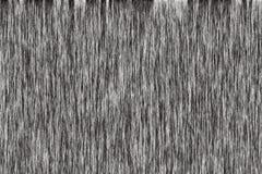Jako tło drewniana tekstura ilustracji