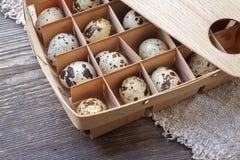 jako wiele tło jajka przepiórka Drewniany kocowania pudełko Zdjęcia Stock