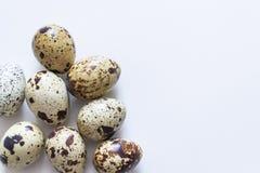 jako wiele tło jajka przepiórka Grupa przepiórki jajka odizolowywający na biały tle Zbliżenie fotografia Zdjęcie Royalty Free
