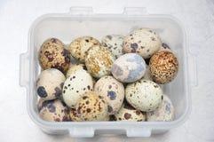 jako wiele tło jajka przepiórka zdjęcia royalty free