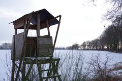 Jaktpredikstol i skog Arkivfoton