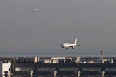 JAL at HANEDA Airport Stock Photos