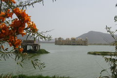 Jal Mahal, Jaipur Foto de Stock Royalty Free