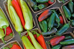 Jalapeno and banana peppers Stock Photography