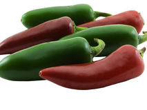 Jalapeno and Chili. Photo of jalapeno and chili peppers isolated on white Royalty Free Stock Images