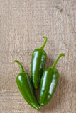 Jalapeno Chillies Stock Photography