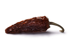 Jalapeno morita-fumé de Chipotle, chemins Photographie stock libre de droits