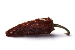 Jalapeno morita-fumado do Chipotle, trajetos Fotografia de Stock Royalty Free