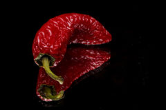 Jalapeno pepper. Aged red hot jalapeno pepper on a black reflective surface with reflection stock image