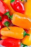 Jalapeno Pepper Background stock image