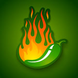 Jalapeno pepper in fire. Vector illustration of a hot jalapeno pepper in fire Royalty Free Stock Photo