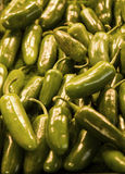 Jalapeno Peppers Royalty Free Stock Photography