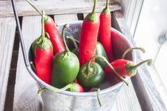 Jalapeno y chile Imagen de archivo libre de regalías