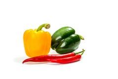 Jalapenopeppar på vita backgroundchilipeppar och röd, gul och grön spansk peppar Arkivbild