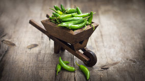 Jalapenos chili pepper in a miniature wheelbarrow. Green Jalapenos chili pepper in a miniature wheelbarrow on wood background Royalty Free Stock Images