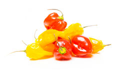 Jalapenos On White Royalty Free Stock Images