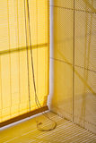 Jalousie amarelo horizontal Fotografia de Stock