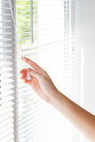 Jalousie blanche s'ouvrante de main femelle sur la fenêtre Images libres de droits