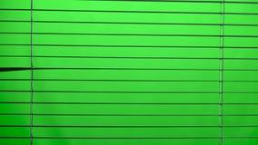 Jalousie offen und nah Grüner Bildschirm stock footage