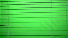 Jalousie offen und nah Grüner Bildschirm stock video footage