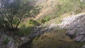 Jalpa Zacatecas Стоковые Изображения RF