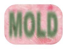 Jamón cortado con el molde Imagen de archivo