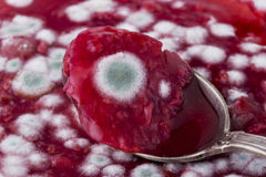 Jam is covered with mold. A strawberry jam covered with green mold Royalty Free Stock Photos