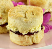 Jam And Cream Scone. Fresh baked homemade scone with jam and cream on a plate Stock Image