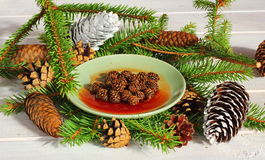 jam from fir cones Royalty Free Stock Image