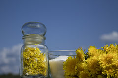 Jam from the flowers of dandelions. Spring jam from the flowers of dandelions royalty free stock photography