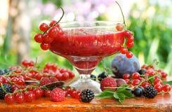 Jam with fresh berries Royalty Free Stock Photo