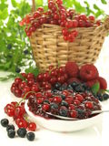 Jam from fresh fruits Royalty Free Stock Images