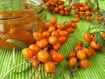 Jam with fruits of sea buckthorn Stock Image