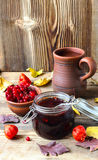 Jam from a guelder-rose Royalty Free Stock Photos