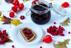 Jam from a guelder-rose Royalty Free Stock Images