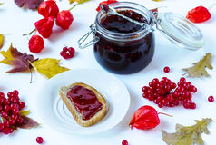 Jam from a guelder-rose Stock Photography