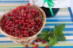 Jam-kruik en rode aalbes Stock Foto
