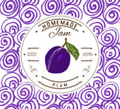 Jam label design template. for plum dessert product with hand drawn sketched fruit and background. Doodle vector plum illustration Royalty Free Stock Images