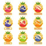 Jam Label Sticker Collection Of Templates In Round Frames. Colorful Berry And Fruit Jar Vector Labels For Homemade Marmalade Stock Photography