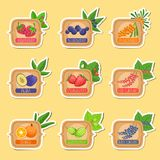 Jam Label Sticker Collection Of Templates In Square Frames Stock Photos