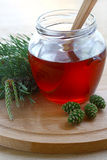 Jam of pine cones. Therapeutic jam, made from green, young pine buds Stock Photos