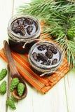 Jam of pine cones Royalty Free Stock Photos
