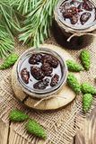 Jam of pine cones Royalty Free Stock Photography