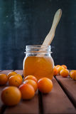 Jam of plums Stock Photography