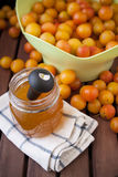 Jam of plums Royalty Free Stock Image