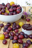 Jam with red and yellow plums Royalty Free Stock Images