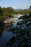 Jamaïca, Negril, Zwarte rivier Stock Fotografie